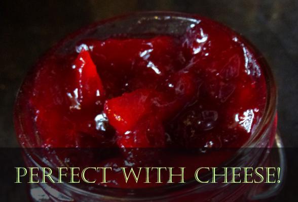 Christmas cranberry chutney