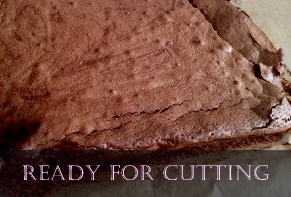 gluten-free choclate brownie